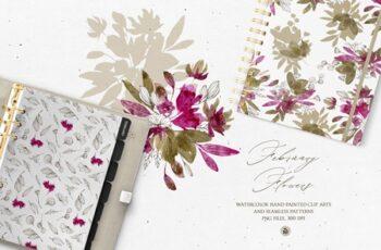 February Flowers 4570110 3