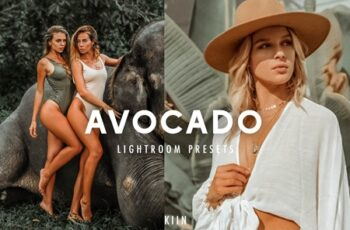 5 AVOCADO LIGHTROOM PRESETS 4469008 6