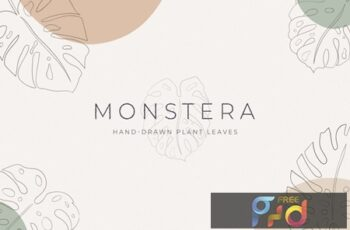 Monstera Hand-Drawn Art Plant KPE9ZCJ 5