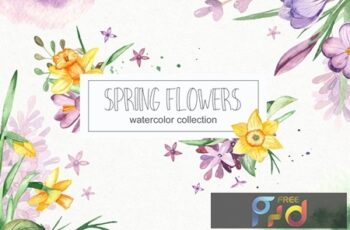 Watercolor spring flowers collection VVD2WC6 11