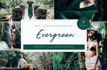 Evergreen Lightroom Presets- Desktop 4585297 2