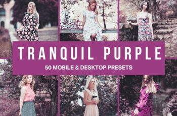 50 Tranquil Purple Lightroom Presets and LUTs 4537559 7