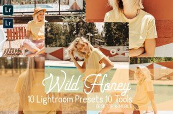 Wild Honey Lightroom Presets 4550767 7