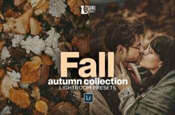 FALL Autumn Collection LR Presets 4628493