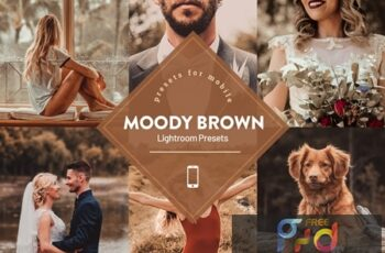 Moody Brown Lightroom Preset 4593839 7