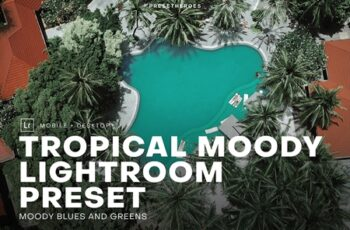 Tropical Moody Lightroom Preset 4552639