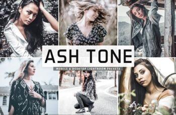 Ash Tone Pro Lightroom Presets 4658890 7