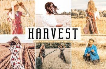 Harvest Pro Lightroom Presets 4659106