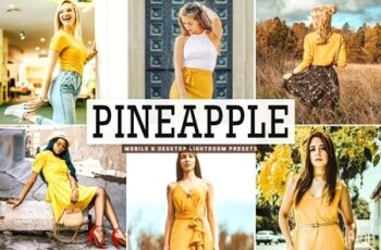 Pineapple Lightroom Presets Pack 4663908 4