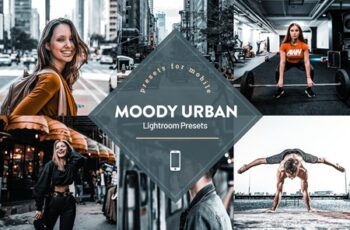 Moody Urban Lightroom Presets 4593840 14