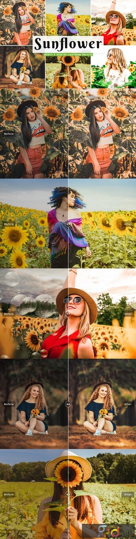Sunflower Lightroom Presets Pack 4659224 1