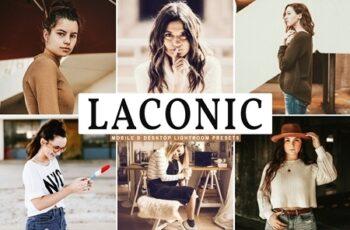Laconic Mobile & Desktop Lightroom Presets 4657419 2