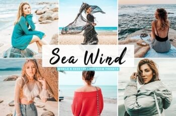 Sea Wind Mobile & Desktop Lightroom Presets 4654979