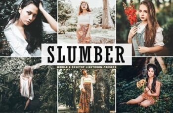 Slumber Mobile & Desktop Lightroom Presets 4655109 4