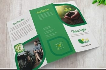 Nature Trifold Brochure Layout with Green Accents 329175245 11
