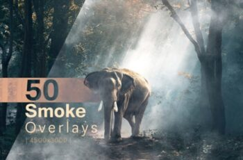50 Smoke Overlays 650218 5