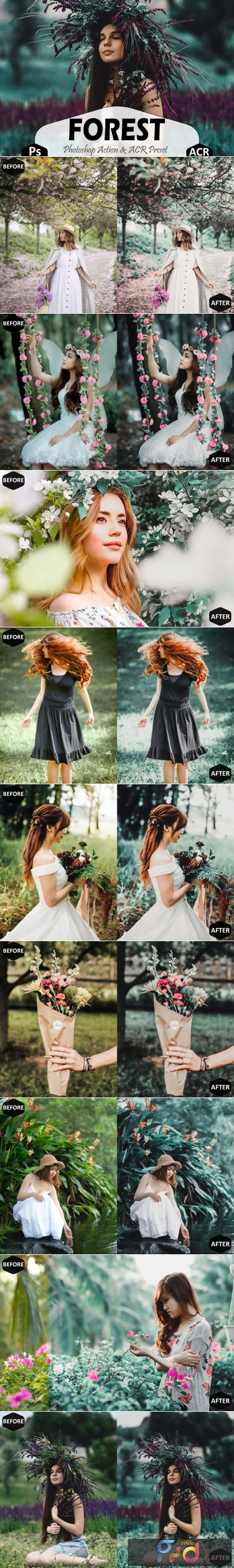 Forest Photoshop Actions and ACR Presets 1629295 1