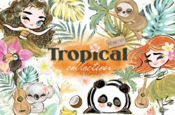 Tropical Illustration 3657778 7