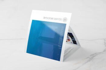 Company Square Trifold Brochure 4691256 2