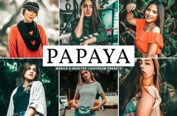 Papaya Mobile & Desktop Lightroom Presets 4744946