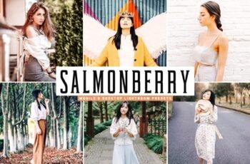Salmonberry Mobile & Desktop Lightroom Presets 4745594 6