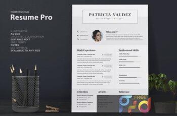 Professional Resume - CV H4Z9E4P 3