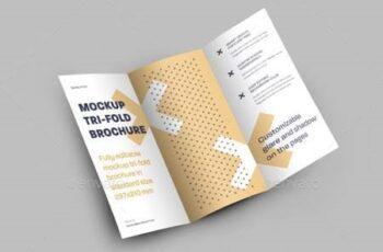 6 Mockups Leafleat DL Trifold Brochure 26126729 4