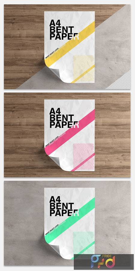 Curled Sheet of Paper Mockup 333493312 1