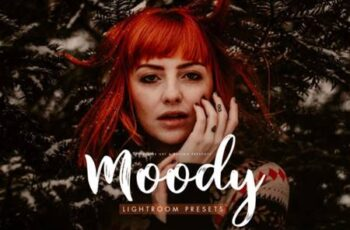 Moody Presets for Desktop + Mobile 3827112 2