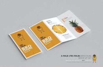 3-Fold (Tri-Fold) Brochure Mockups 26039647 3