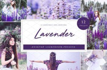 Desktop Presets - Lavender 4789375 3