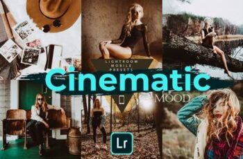 Cinematic Mood LR Mobile Presets 4728561 3