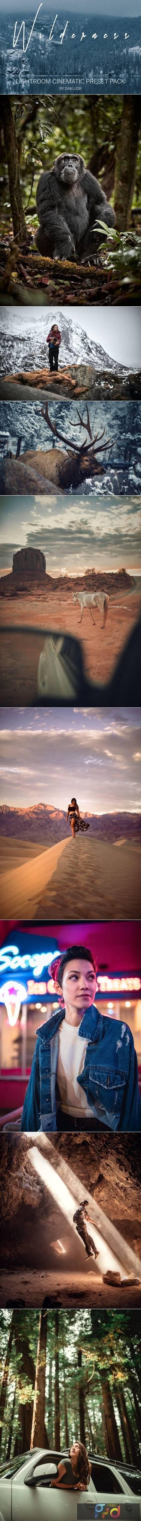 WILDRENESS -- Cinematic Preset Pack 4570533 1