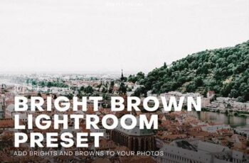 Bright and Brown Lightroom Preset 4552387 4