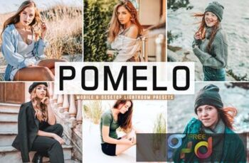 Pomelo Mobile & Desktop Lightroom Presets A2XGKPS 6
