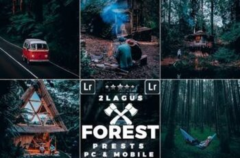 Forest Moody-Travel Presets for Mobile and Desktop Lightroom 26365043 5