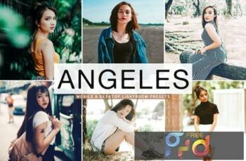 Angeles Mobile & Desktop Lightroom Presets ZC5M4M4 7