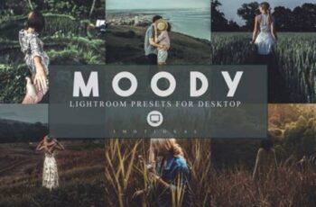 14 Moody Lightroom Presets 3974499 3