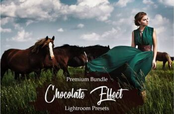 Chocolate Effect Lightroom Presets 3403629 11