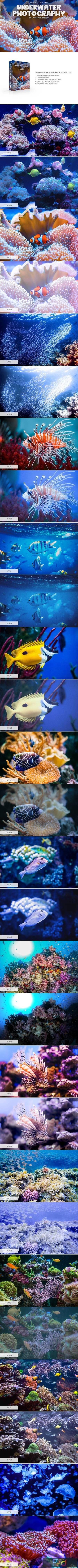 Underwater Photography Presets 4725471 1
