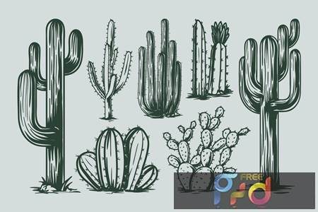 Cactus Hand Drawing GT6YD4B 1