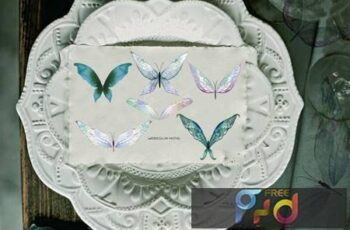 Watercolor tender butterflies and moths 4ADRYD2 6
