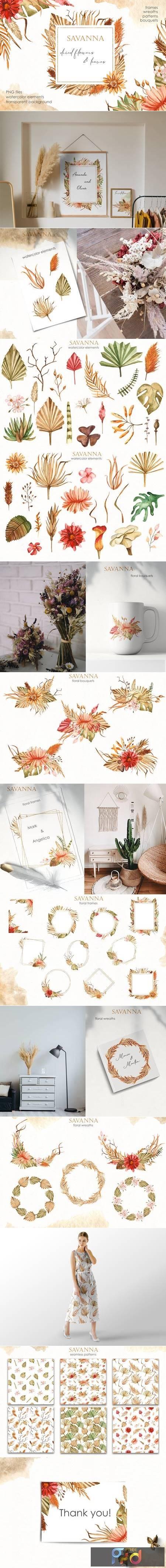 Savanna dried flowers Watercolor 4846614 1