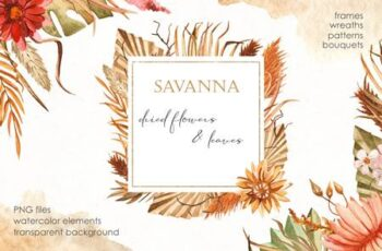 Savanna dried flowers Watercolor 4846614