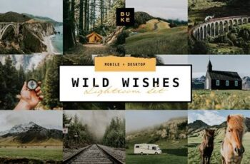 Wild Wishes – 6 Lightroom Presets 4876700 3