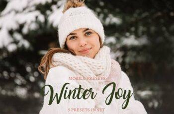 Winter Joy Mobile Presets 4423389 5