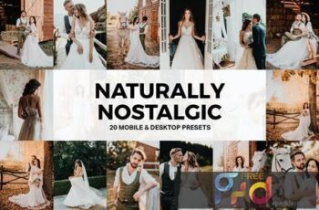 20 Naturally Nostalgic Lightroom Presets and LUTs AAL4NZK 4