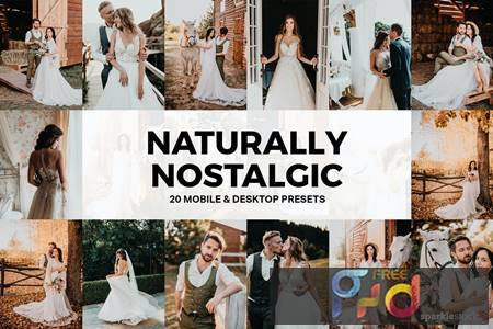 20 Naturally Nostalgic Lightroom Presets and LUTs AAL4NZK 1
