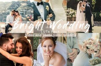 BRIGHT WEDDING - LUTs Pack 4934911 7