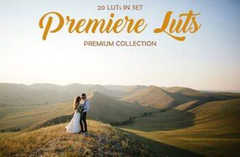 Premiere LUTs 4023574 7